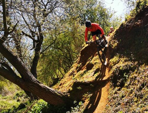 Gary And Phil's Singletrack Session